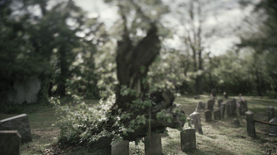 Thomas Clement Oliver, Salem, NJ