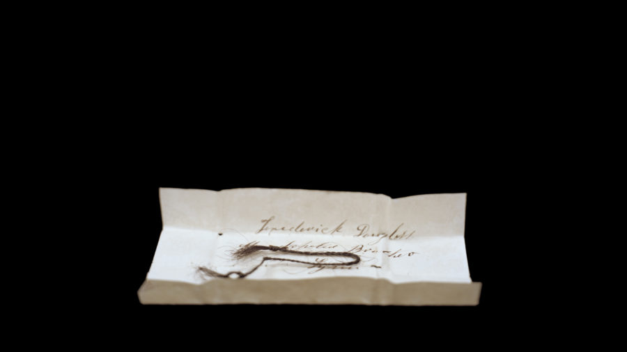 Frederick Douglass Hair, Nebraska State Historical Society, Linc