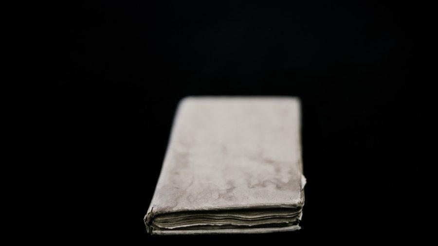 goodwin_book-3
