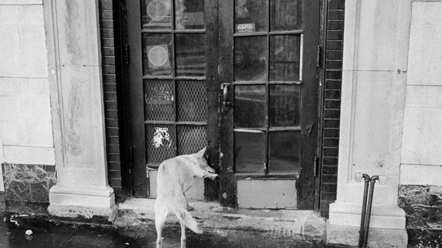 Hoboken-Late-1970s