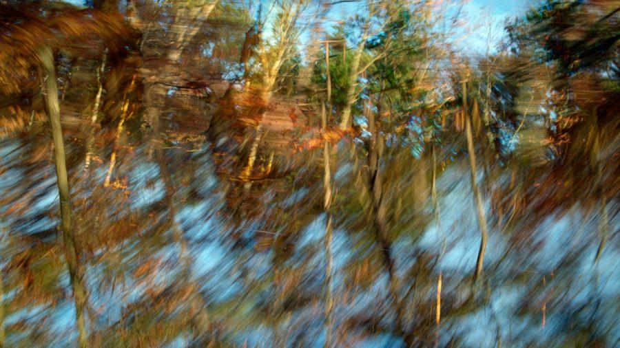 untitled_landscape-15